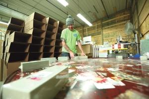 FloraCraft invests in growth while remaining rooted in Michigan.