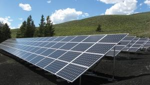 Patriot Solar Group filed for bankruptcy after a key customer, Vanguard Energy Partners, failed to pay the company for work completed on four large-scale solar energy projects in Massachusetts.