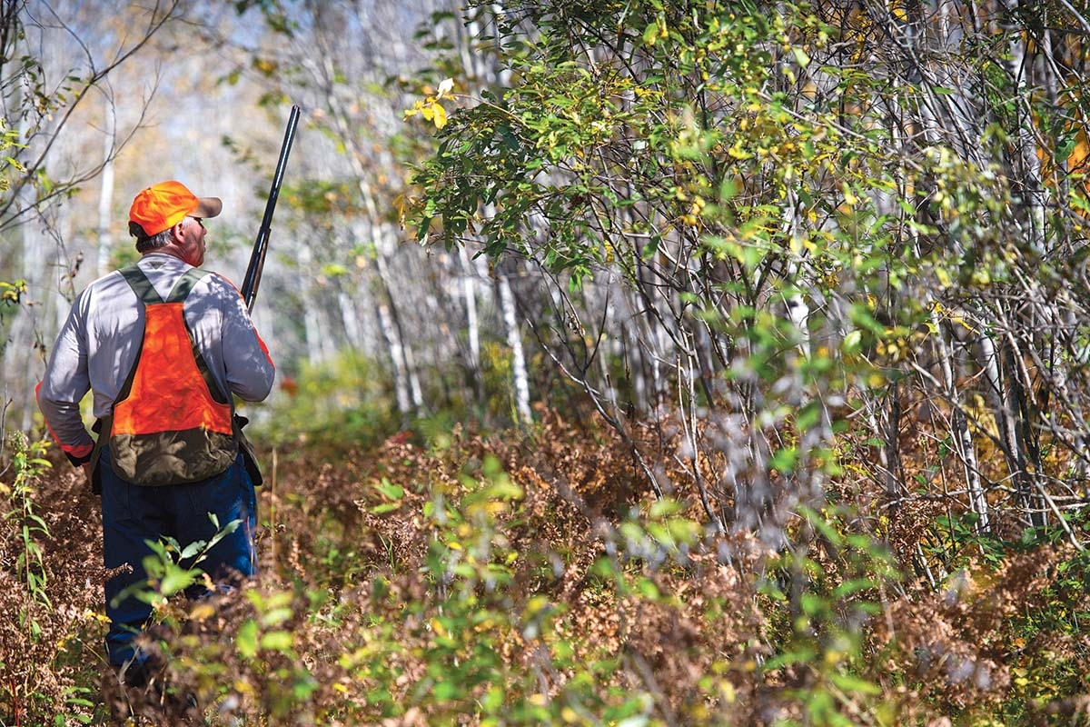According to a Michigan Technological University study, the number of hunters in Michigan could plummet in the coming decades as fewer people pick up the sport and as existing participants age out.