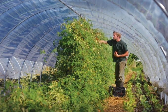 A bill introduced by Sen. Debbie Stabenow, D-Mich. would address multiple challenges faced by urban farmers. For one, the bill would expand funding from the USDA to include the small-scale operations. However, some growers question exactly how helpful that funding will be, given the financial realities of operating a farm in an urban setting. Lance Kraai (pictured above) operates the 3-acre New City Farm on Grand Rapids' northeast side and believes urban farms are best suited to drive social change rather than profits.
