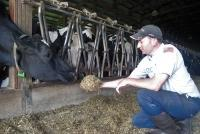 Dairy farmer Paul Pyle said low prices for milk have many in the industry considering selling off their herds and quitting.