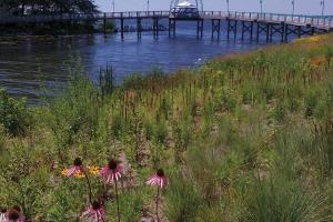 The Muskegon Lake Watershed Partnership worked for years to help clean up the lake and now aims to ensure equitable and meaningful public access to the Muskegon Lake waterfront.