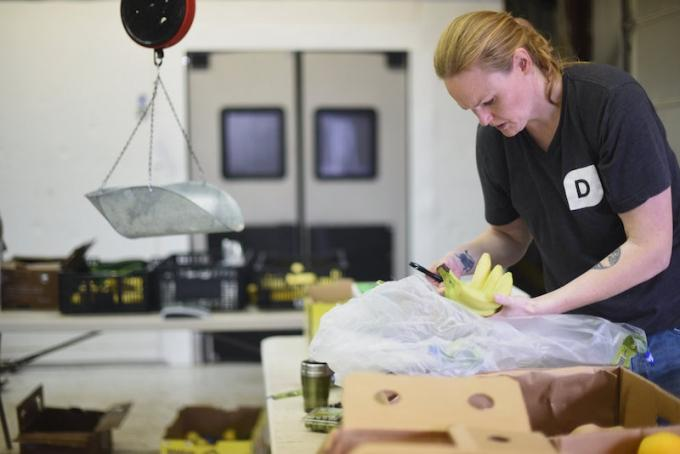 Grand Rapids-based organic food delivery service Doorganics LLC is expanding to the Detroit area.