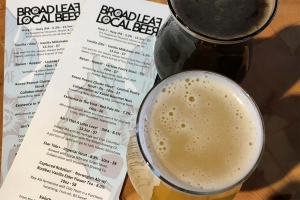 Broad Leaf plans self-distribution to get real-time feedback, weigh demand for beers