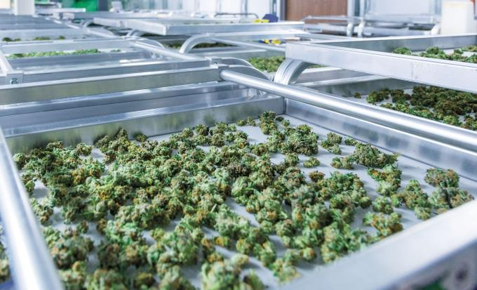 Most economic development organizations around West Michigan largely have avoided getting involved in projects in the state's nascent medical marijuana industry, citing concerns over federal law and workplace drug-testing mandates at other local companies.