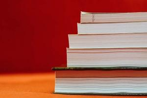 Business-backed reading standards held up in Legislature