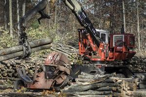 Timber logging in the Pigeon River State Park in Northern Michigan is but one facet of Michigan's nascent forestry industry that a group of academics, state officials and industry leaders hope to grow under the Michigan Forest Biomaterials Institute. Proponents of the initiative say Michigan is positioned to become a hub for developing new technologies for materials from the state's forests.