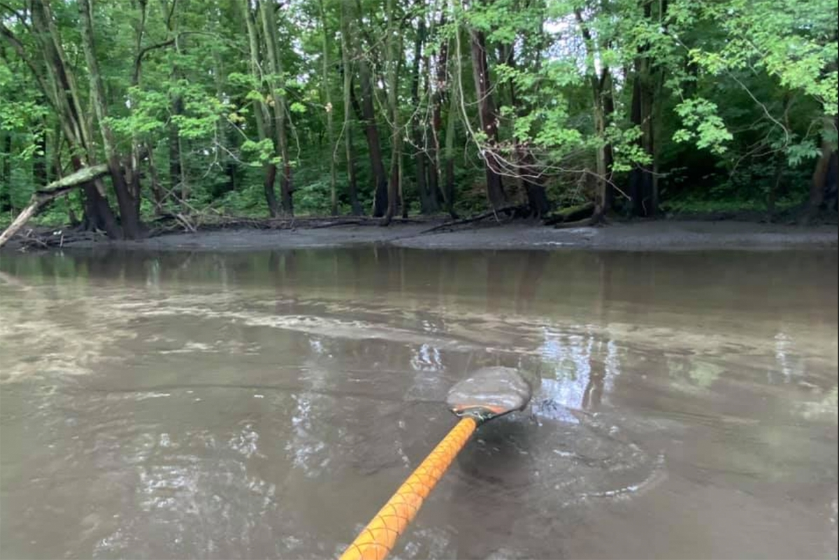 Sedimentation caused by the drawdown of Morrow Dam on the Kalamazoo River sticks to fishing guide Jon Lee's oar. The state Department of Environment, Great Lakes and Energy issued a violation notice to the dam's owner on July 8.